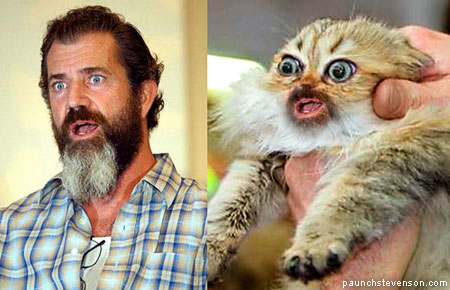 Mel Gibson and his cat