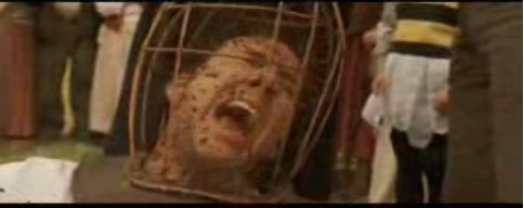 Nicholas Cage stung in the head by bees